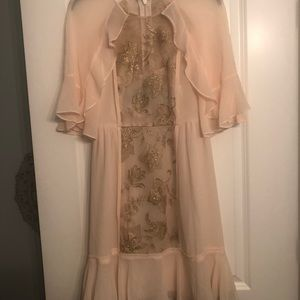 Cream/blush and gold bcbg ruffle dress